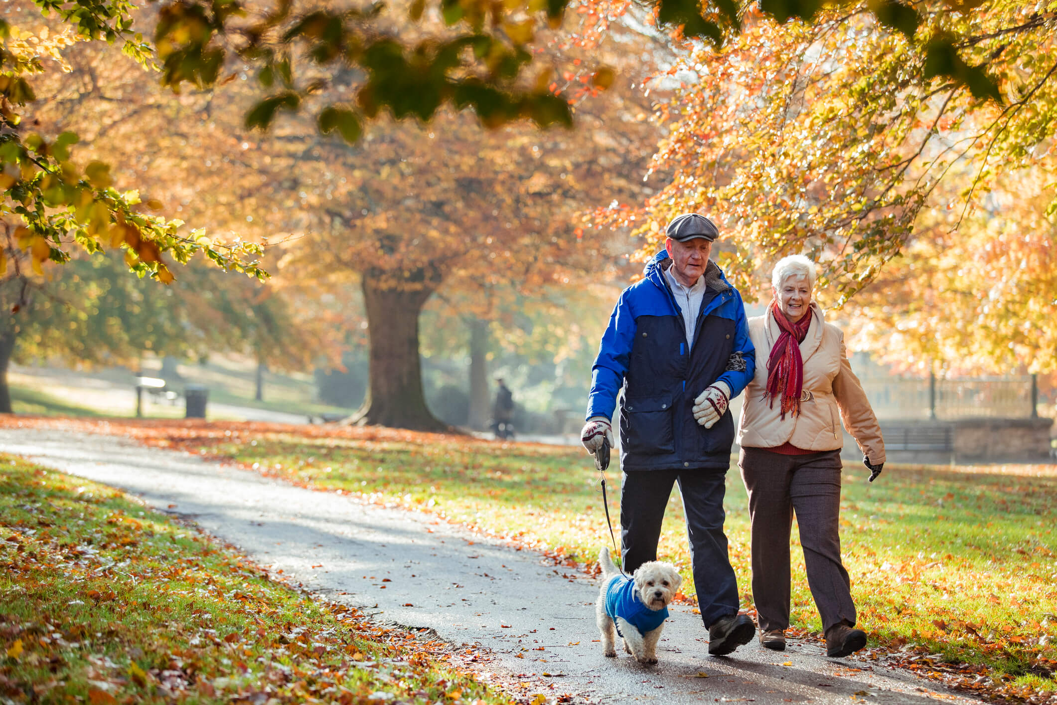 Image of next post - 5 FUN FALL IDEAS FOR ACTIVE OLDER ADULTS